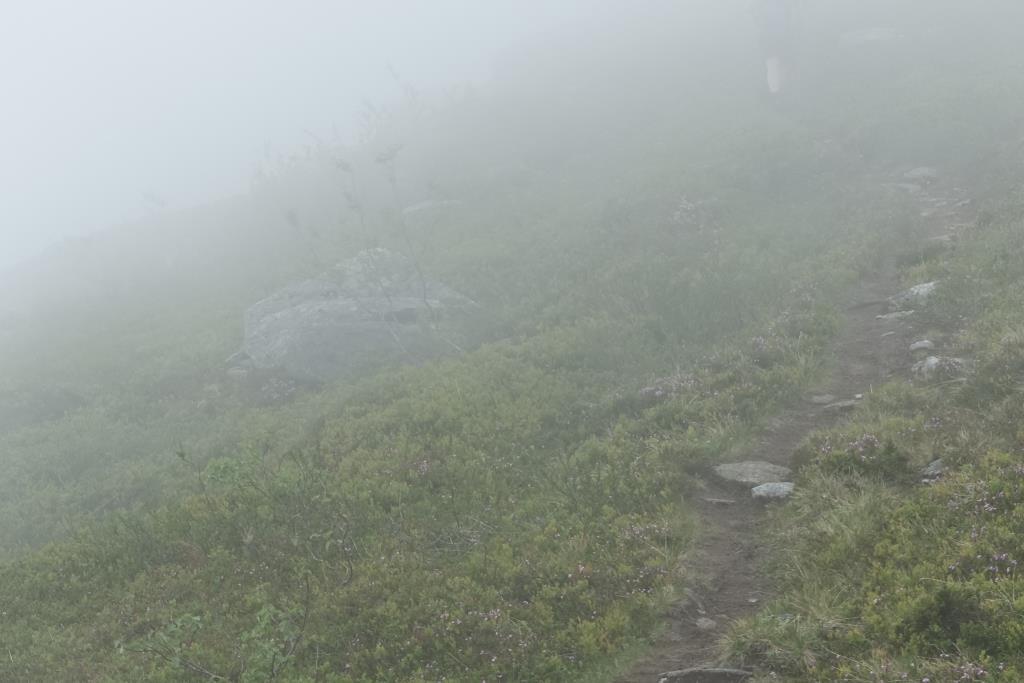 Nebel im Trollheimen Nationalpark